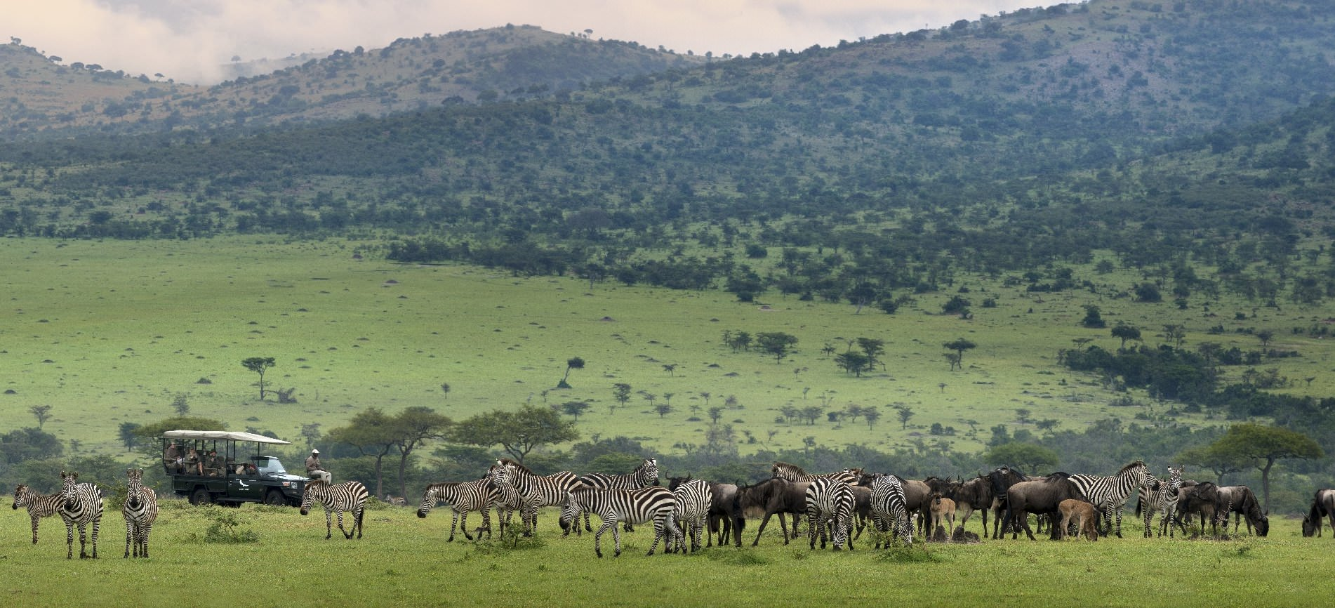 The Great Migration & Mara River Crossing