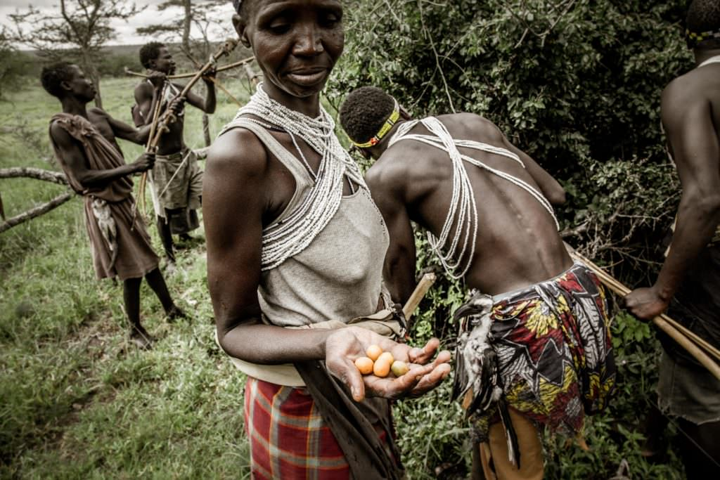 Legendary Expeditions - Mwiba and Maswa - Tanzania